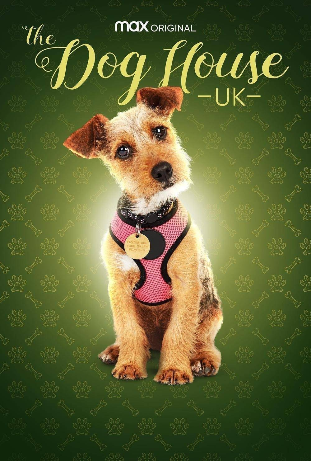 HBO Max Debuts THE DOG HOUSE: UK